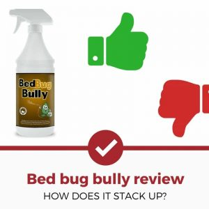 bed bug bully review