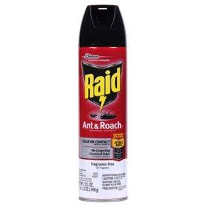 Raid Ant & Roach Killer Insecticide Spray