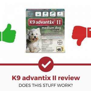 k9 advantix ii review
