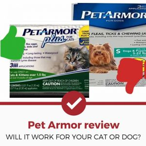 petarmor review for cats and dogs (1)