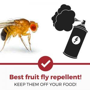 best fruit fly repellent