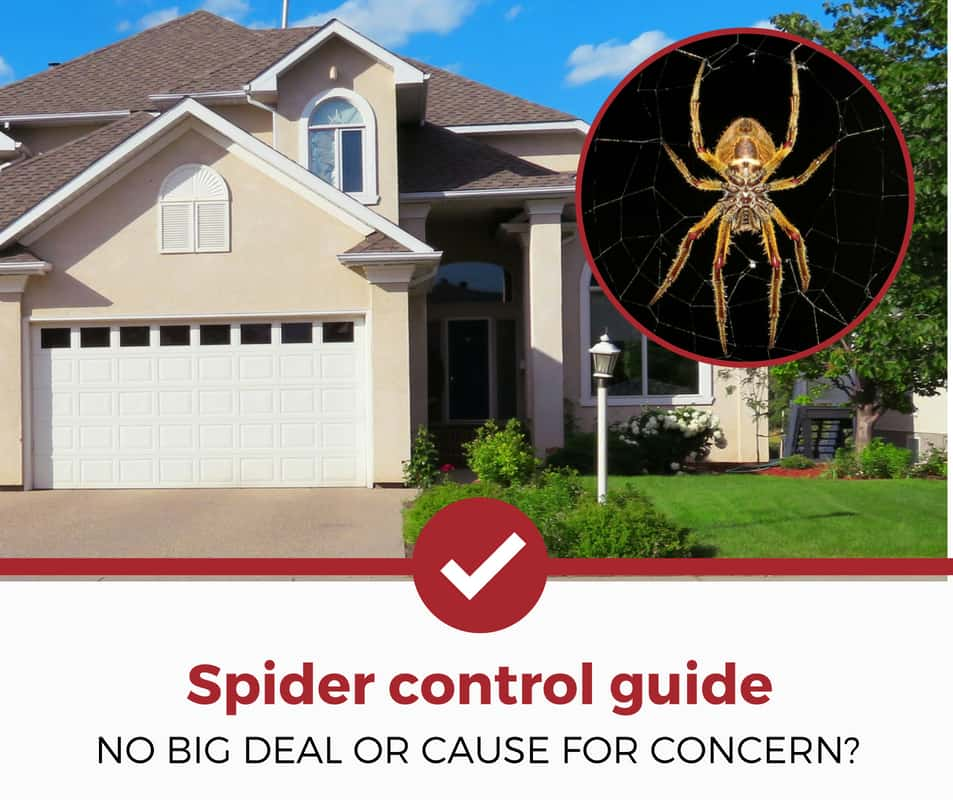 SPIDER control guide