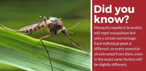 Are Mosquito Repellent Bracelets Effective?