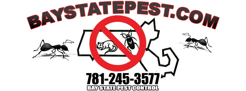 Bay State Pest Control