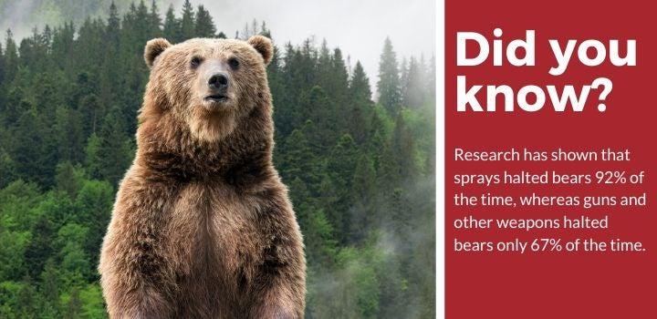 Bear Attack Spray Facts