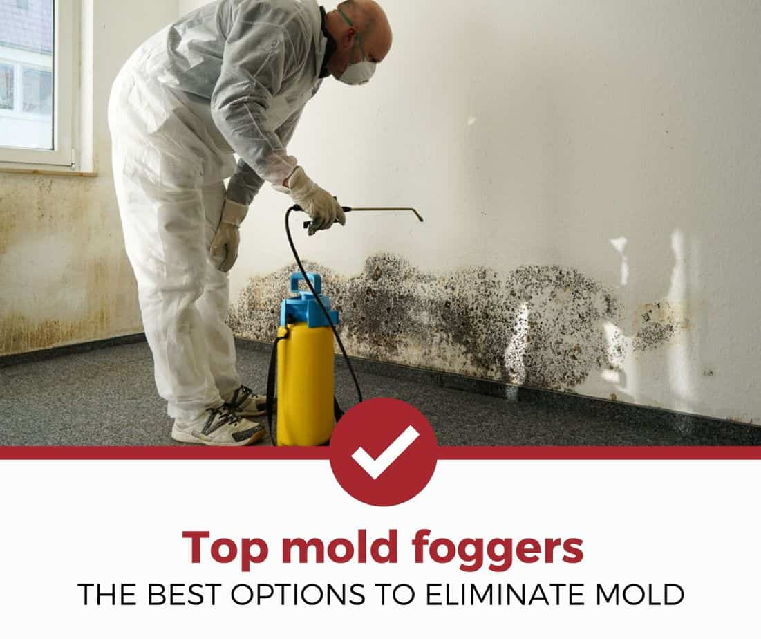 Best Mold Foggers