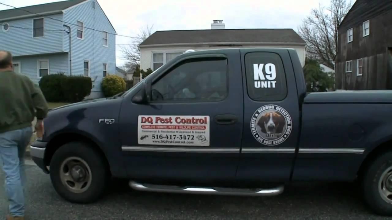 DQ Pest Control Company