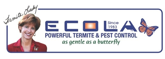 Ecola Termite and Pest Control Services