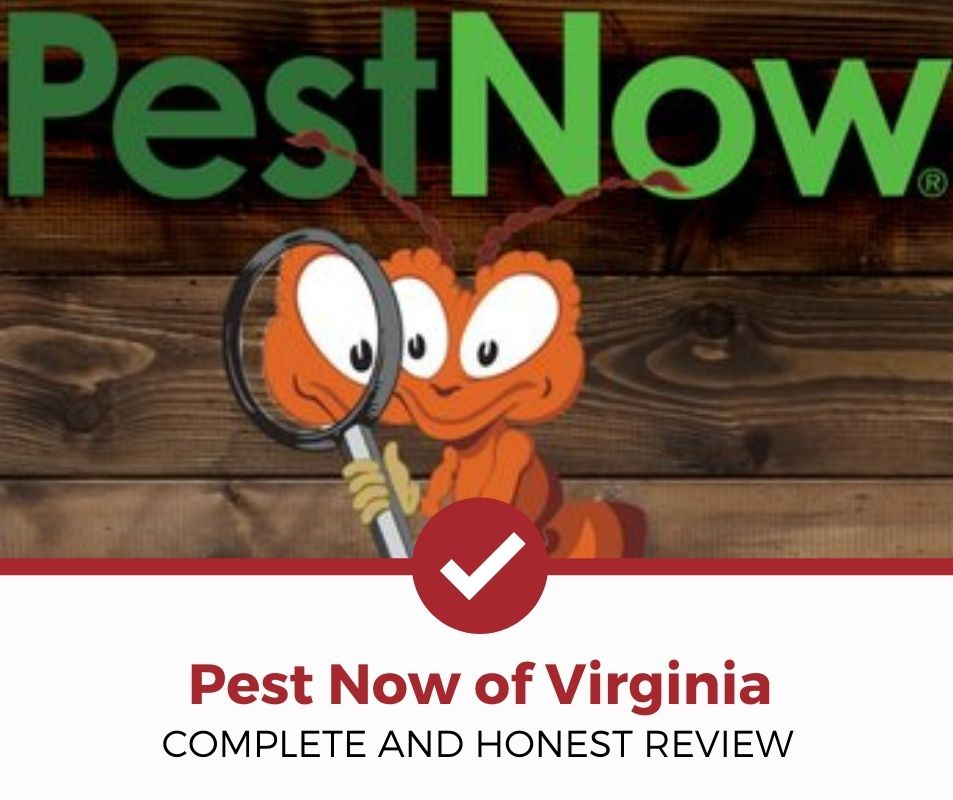 Pest Now of Virginia Company Review