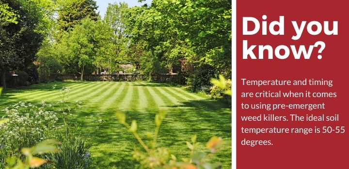 Pre-Emergent Weed Killer Facts
