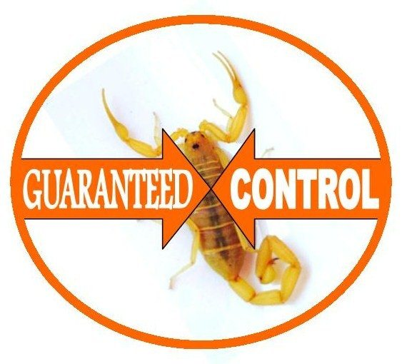 Responsible Pest and Scorpion Control