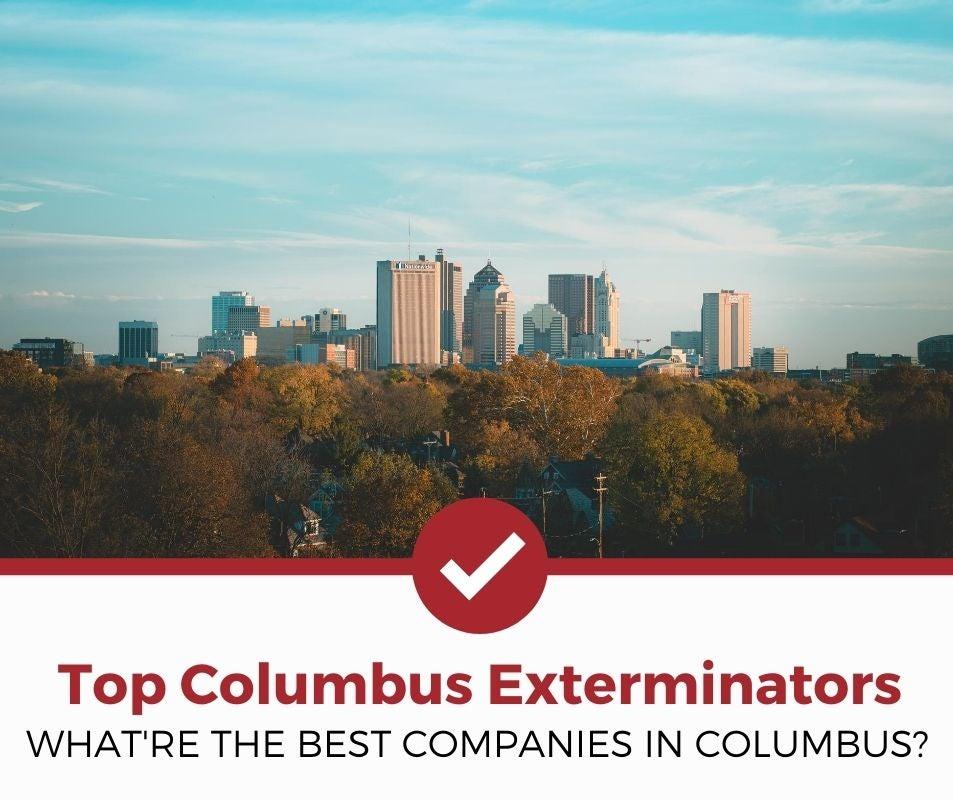 best columbus oh pest control companies