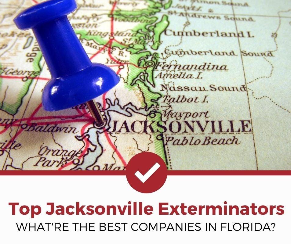 best jacksonville fl pest control companies