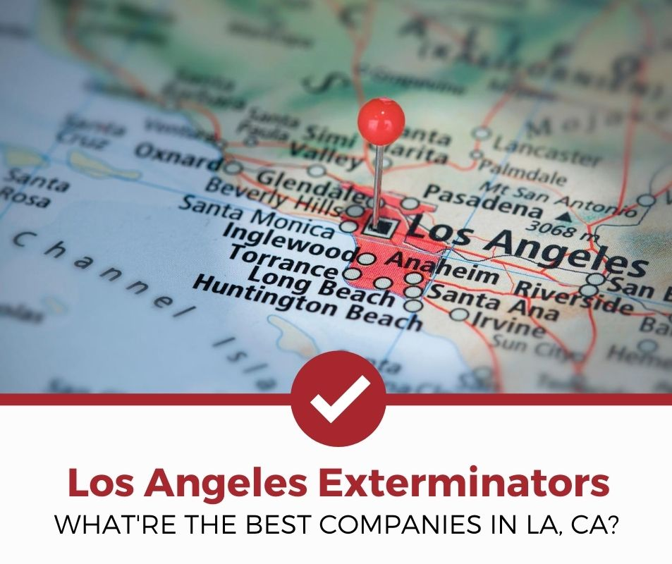 best los angeles ca pest control companies