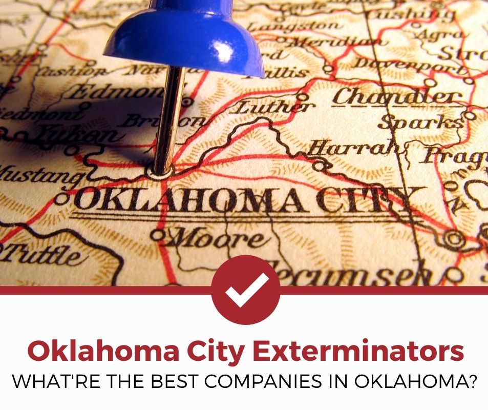 best oklahoma city ok pest control companies
