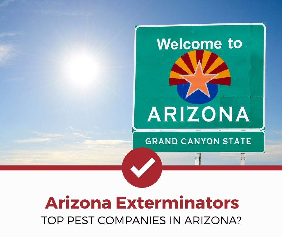 best pest control company arizona