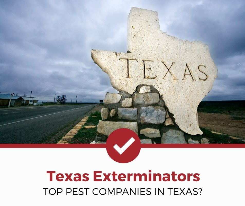 best pest control company texas