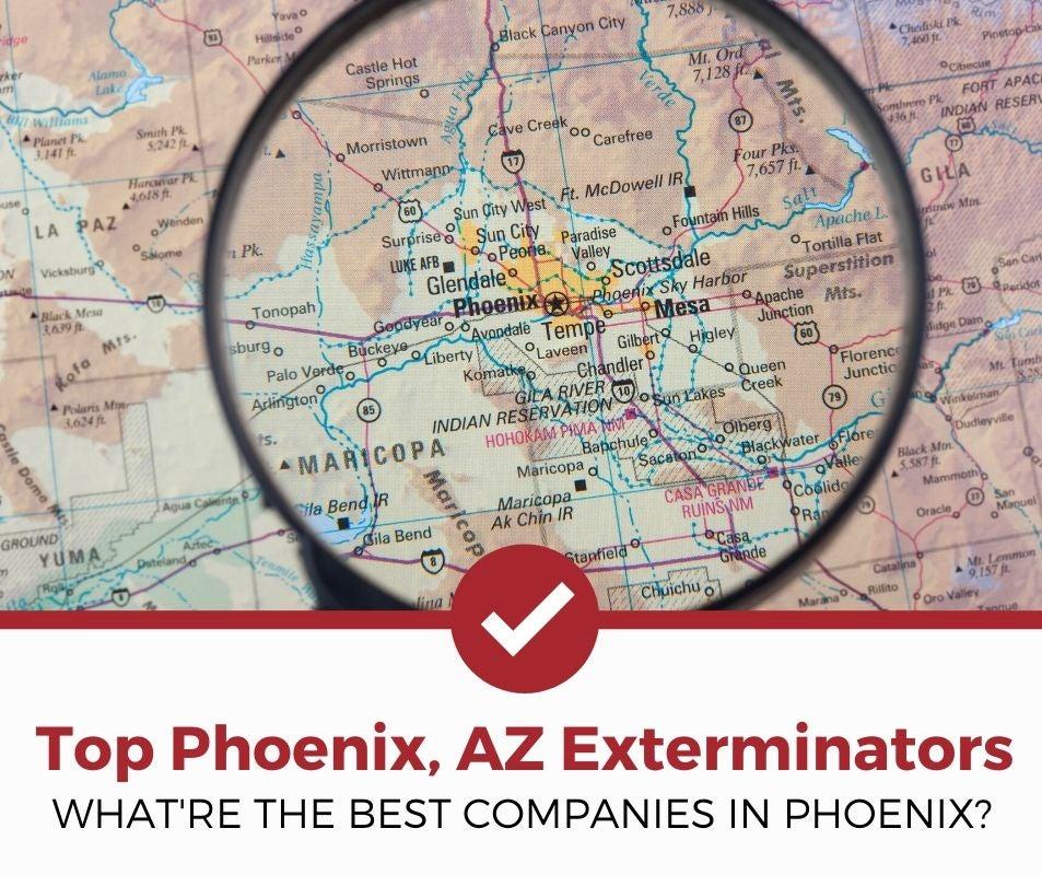 best phoenix az pest control companies