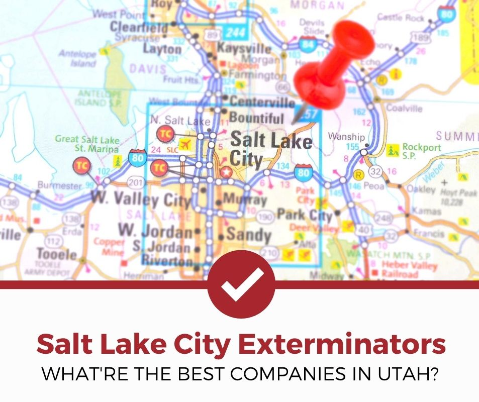 best salt lake city ut pest control companies