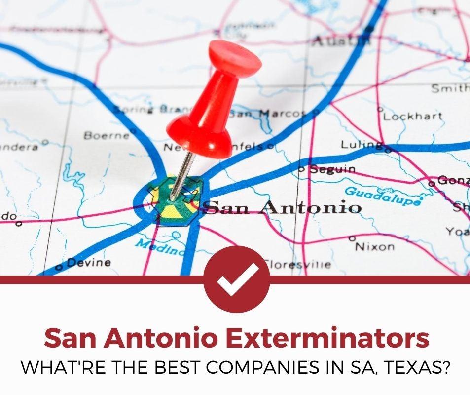 best san antonio tx pest control companies