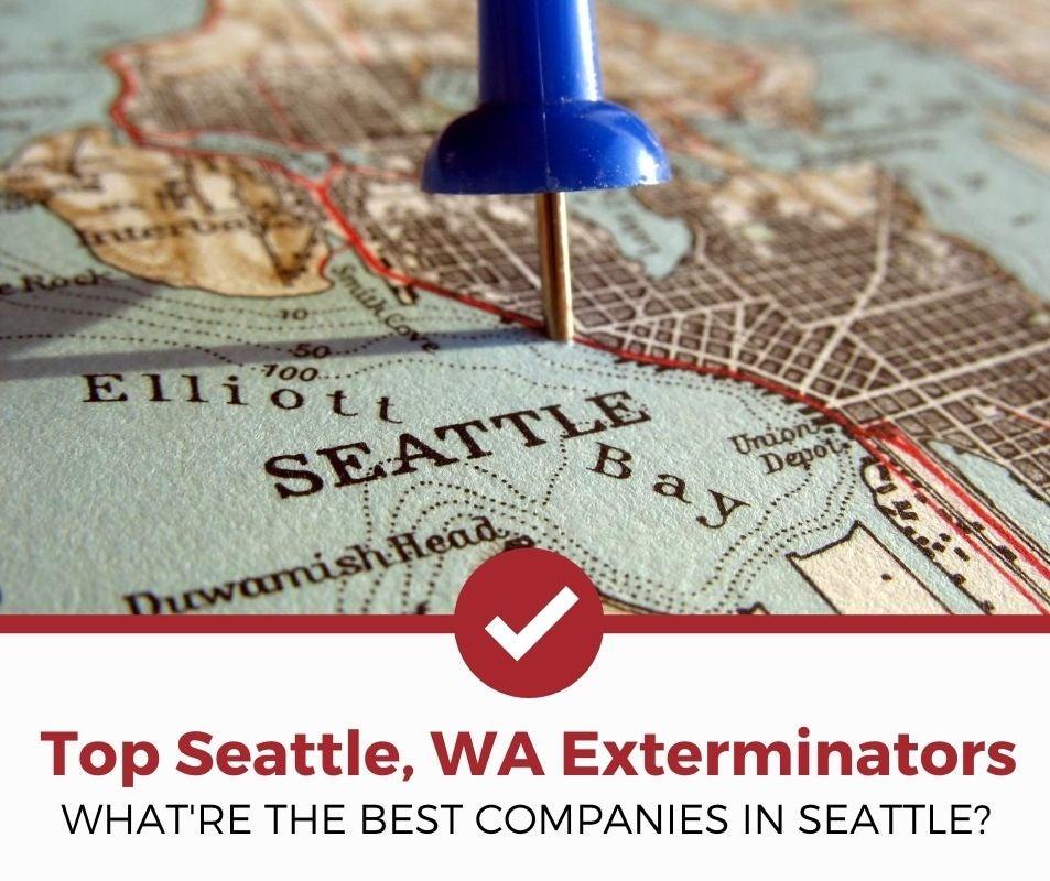 best seattle wa pest control companies