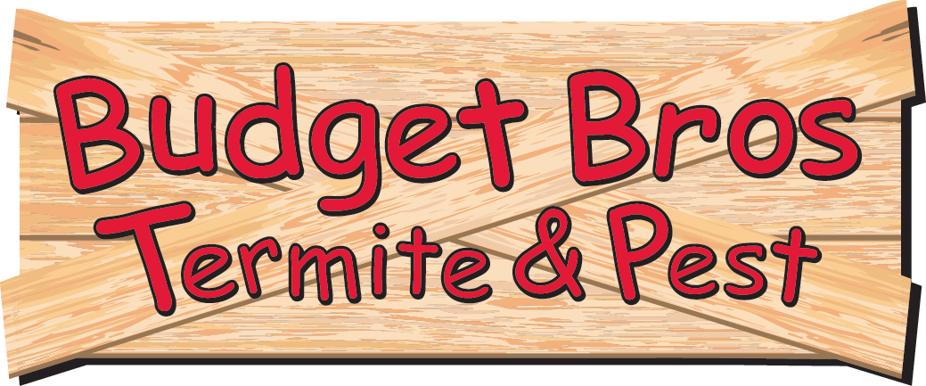 budget brothers termite and pest review