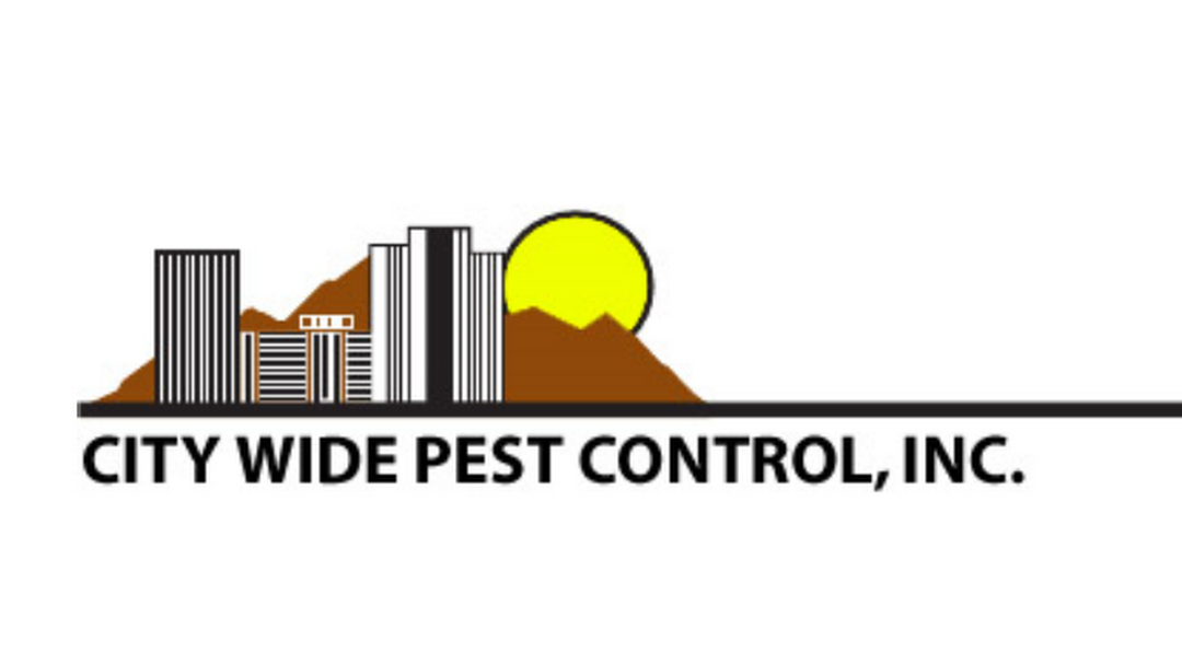 city wide pest control review