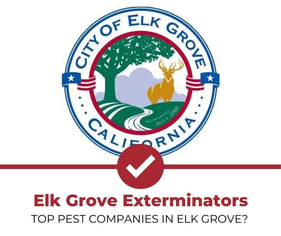 elk grove pest control companies
