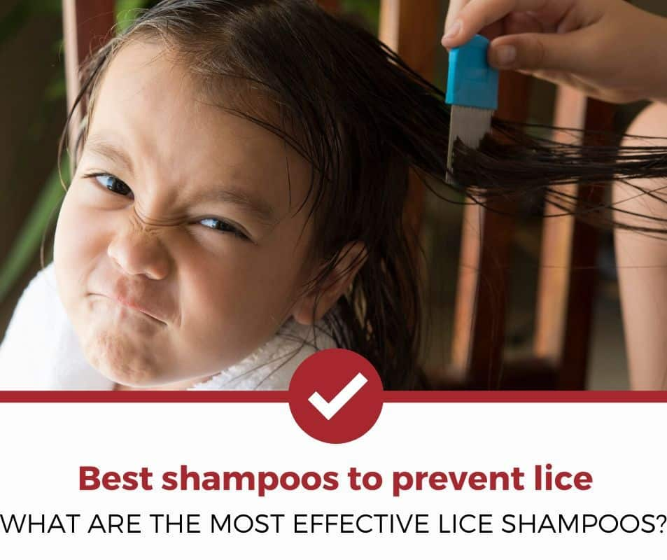 What are the most effective shampoos to prevent lice?