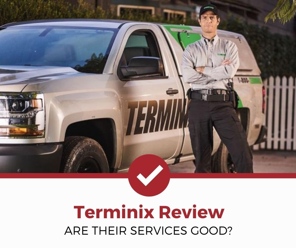 terminix Company Review