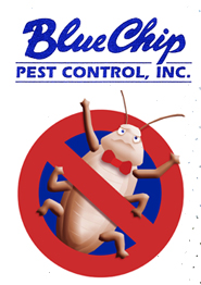 Blue Chips Pest Control Company